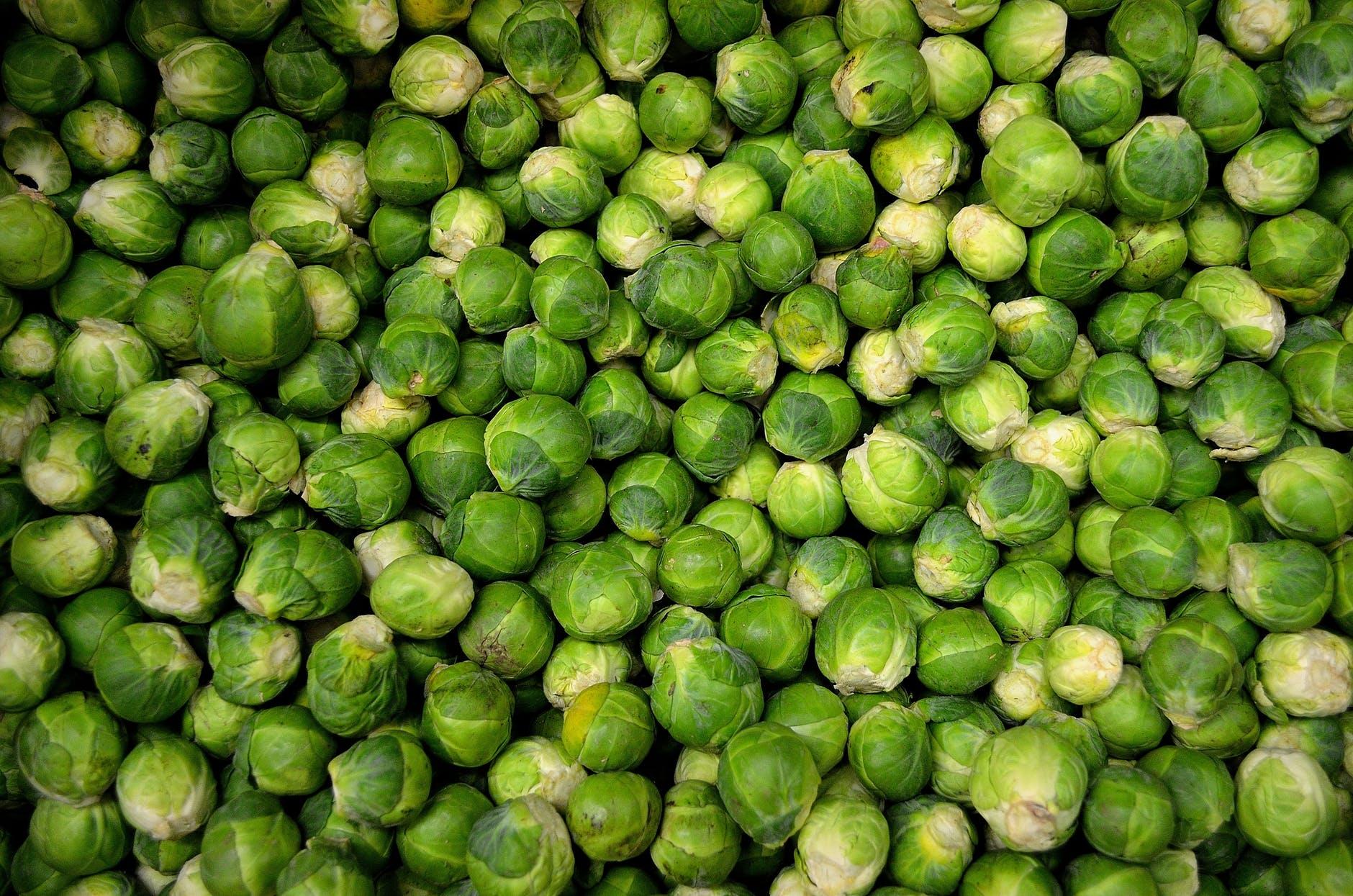 Kubis Brussel Ini Daftar Sayuran Paling Sehat di Dunia