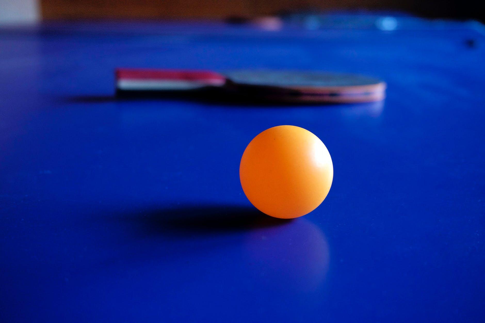 Memahami permainan tenis meja dan teknik dasarnya.